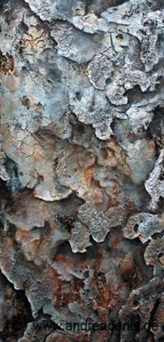 Rinde des Drachenbaums  Dracania cinnabari (Detail)