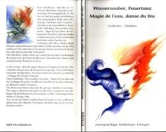 Wasserzauber -Feuertanz